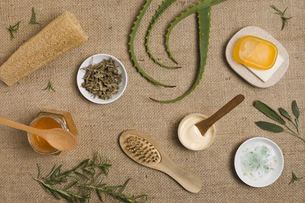 Pure Natural Healing PDF